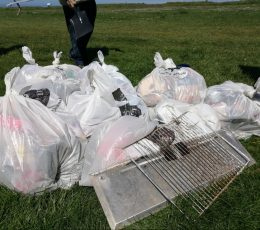 Full bags of rubbish collected
